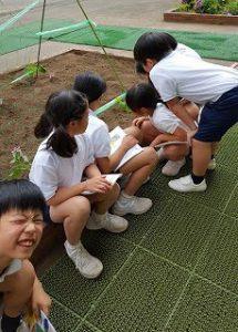 東星学園 大矢正則校長 カトリック ミッション 男女 4年生 理科(3)