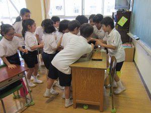 東星学園 校長 大矢正則 清瀬 私立 小学校 キュウリの収穫(4)