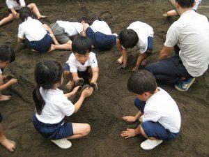 東星学園 校長・大矢正則 カトリック ミッション 男女 「砂や水でおもいきり遊ぼう!」(2)