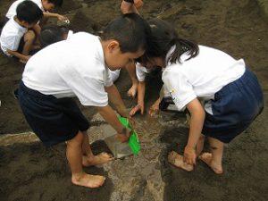 東星学園 校長 大矢正則 清瀬 私立 小学校 「砂や水でおもいきり遊ぼう!」(7)