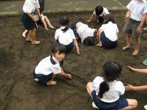 東星学園 大矢正則校長 清瀬 私立 小学校 「砂や水でおもいきり遊ぼう!」(3)