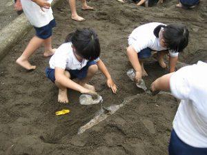 東星学園 校長・大矢正則 清瀬 私立 小学校 「砂や水でおもいきり遊ぼう!」(5)