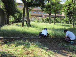 東星学園 校長・大矢正則 清瀬 私立 小学校 始業日に向けて(2)