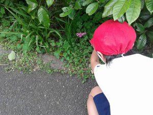 東星学園 校長・大矢正則 カトリック ミッション 男女 2年生 春いっぱい(5)
