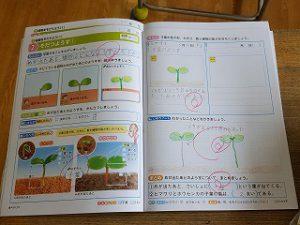東星学園 校長・大矢正則 カトリック ミッション 男女 3年生 理科(5)
