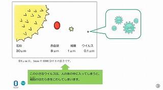 東星学園 大矢正則校長 カトリック ミッション 男女 コロナウイルスってなんだろう?②(3)
