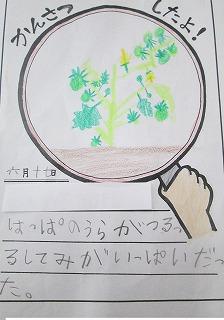 清瀬 私立 小学校 東星学園 校長 大矢正則 2年生 生活(4)