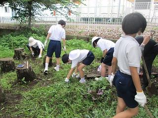 清瀬 私立 小学校 東星学園 大矢正則校長 校内清掃ボランティア(2)