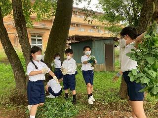 カトリック ミッション 男女 東星学園 校長 大矢正則 宗教委員の活動 (1)